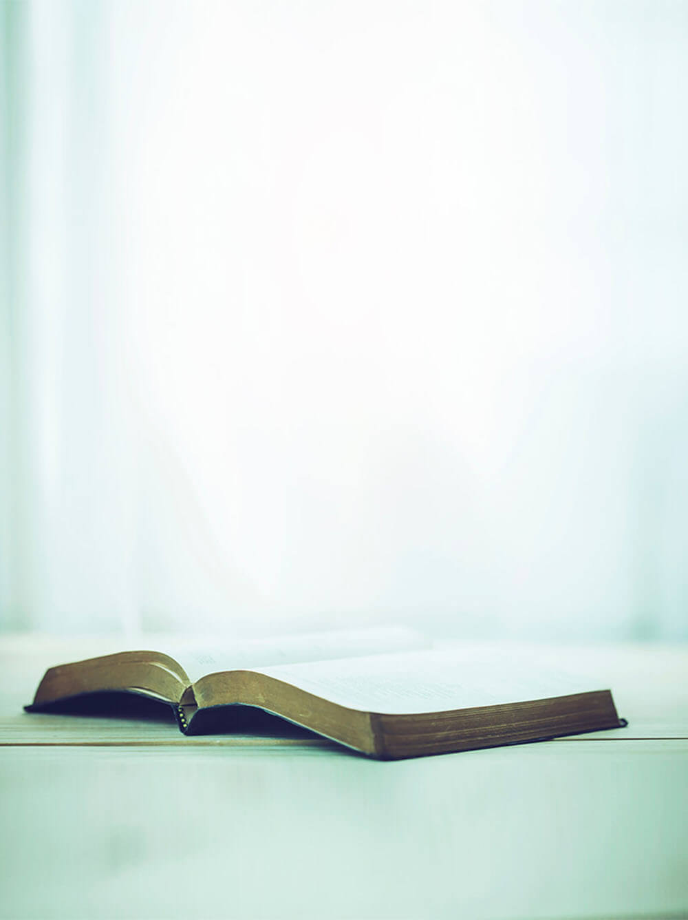 Open bible on a table white background