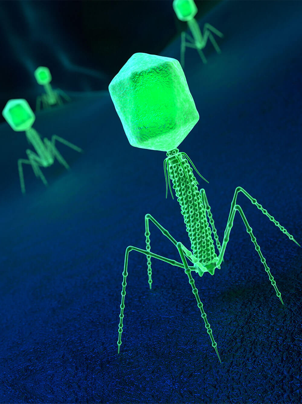 Viruses under a microscope rendition