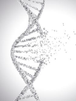 Is Darwinian Evolution Dead?