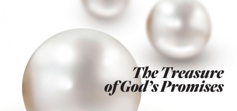 The Treasure of God's Promises - Banner (2)