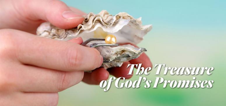 The Treasure of God's Promises - Banner (3)