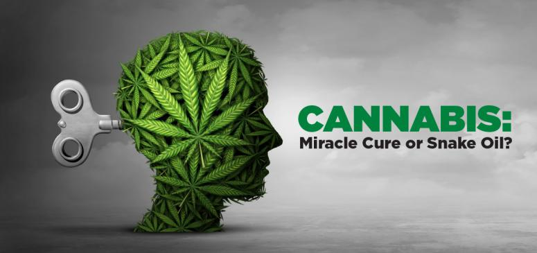 Is Cannabis a Cure-All or a Scam? (Jan-Feb 2020)