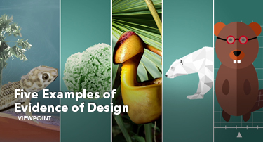 Tomorrow's World Viewpoint | Five Examples of Evidence of Design