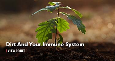 Dirt And Your Immune System