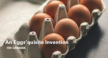 An Eggs'quisite Invention