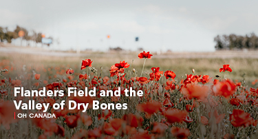 Oh Canada | Flanders Field and the Valley of Dry Bones
