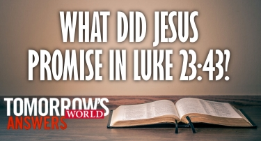 TW Answers - What Did Jesus Promise in Luke 23:43?