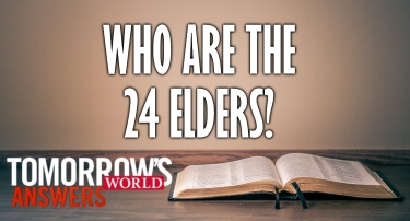 TW Answers | Who Are the 24 Elders?
