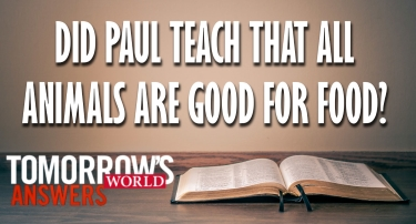 TW Answers | Did Paul Teach That All Animals Are Good for Food?