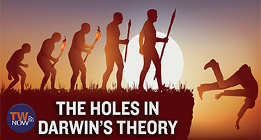 TWNow: The Holes in Darwin's Theory